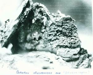 FromRussiaUFO Artifact Russias-Roswell-Ocmamku-Tree