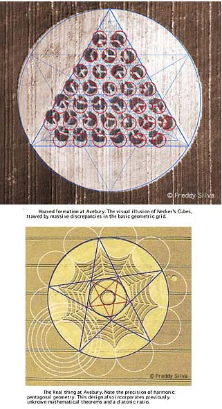 PureUFODynamite Avebury crop_circles_4004