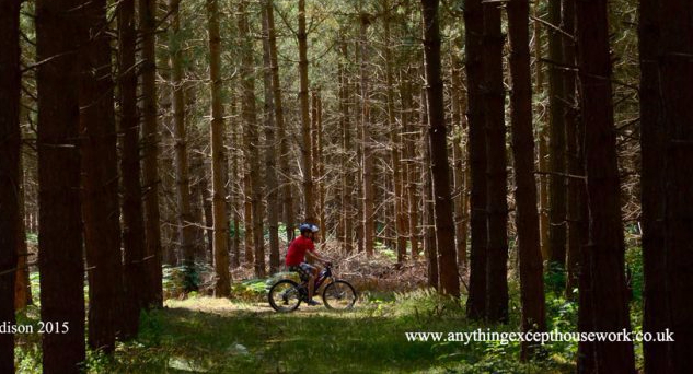 Rendlesham Matrix Bike-Riders-In-Rendlesham-ForestCopyright
