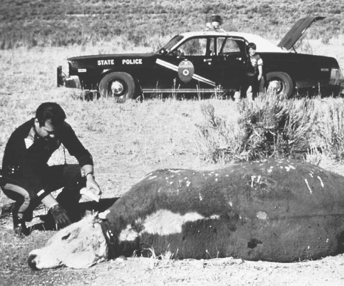 StalkingtheSkinwalker cattle mutilation