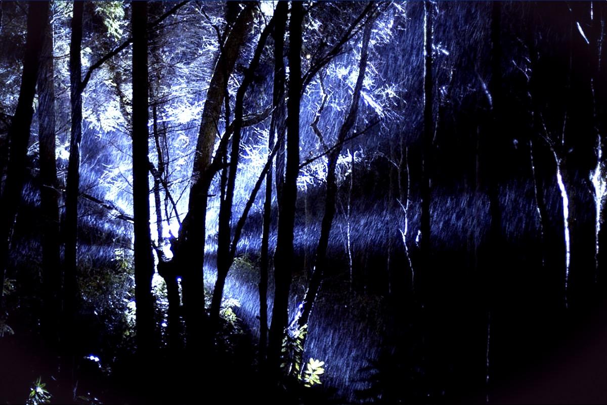 Left At Light rendelsham-forest