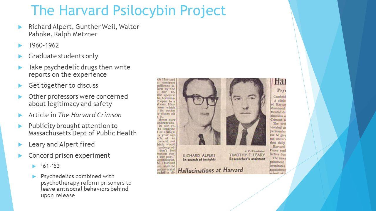 TheMurderOfMary The+Harvard+Psilocybin+Project