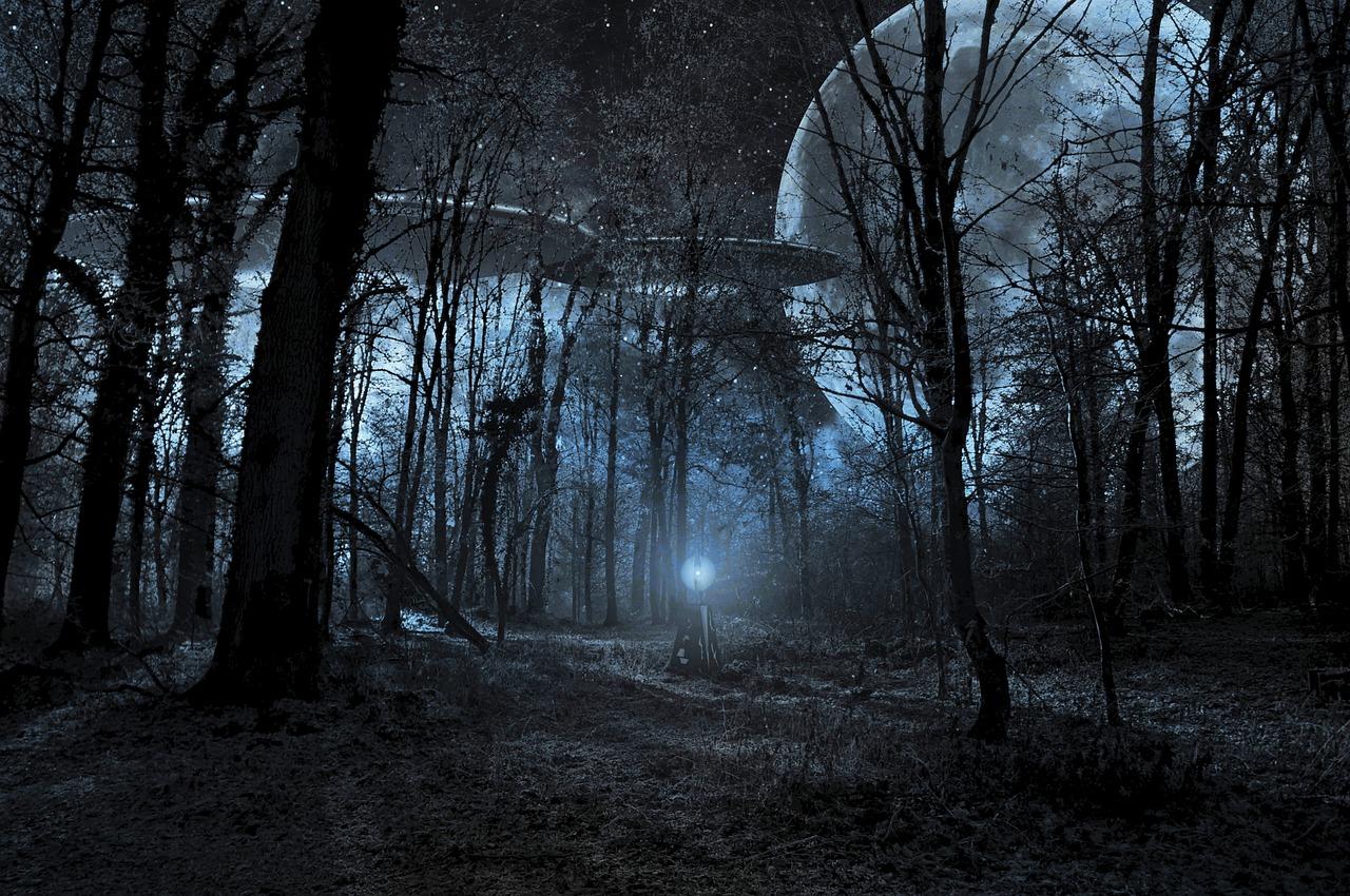 TrueUfology Forest ufo-1951536_1280