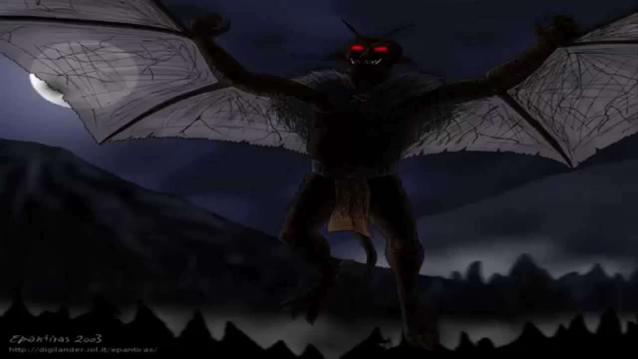 Photos Extra YT Moth ( httpswww.youtube.comwatchv=WOhIhpz999E ) maxresdefault